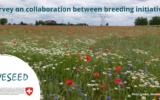 liveseed, breeding, initiatives, organic, survey, field, wheat, poppies