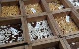 organic seed market trends